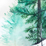 Watercolor turquoise winter wood forest pine landscape.  Royalty Free Stock Images