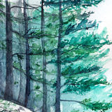 Watercolor turquoise winter wood forest pine landscape.  Royalty Free Stock Photo