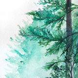 Watercolor turquoise winter wood forest pine landscape.  Royalty Free Stock Image