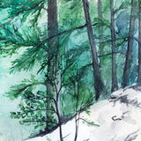Watercolor turquoise winter wood forest pine landscape.  Stock Image