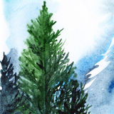 Watercolor turquoise winter wood forest pine landscape.  Stock Photography