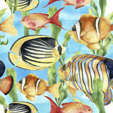 Watercolor underwater pattern. Hand painted tropic fish: angelfish, butterflyfish, clownfish and laminaria on blue Royalty Free Stock Photo