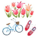 Watercolor urban lifestyle set inspired by Amsterdam tulip festival royalty free illustration