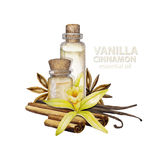 Watercolor vanilla oil Royalty Free Stock Photo