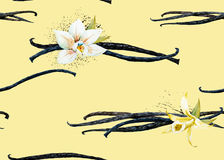 Watercolor vanilla and orchid pattern Stock Photos