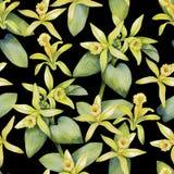 Watercolor vanilla pattern Stock Photos