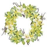 Watercolor vanilla wreath Stock Photography