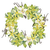 Watercolor vanilla wreath. Hand painted floral design Royalty Free Stock Photo