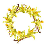 Watercolor vanilla wreath. Hand painted floral design. Frame on white background Stock Photography
