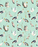 Watercolor vector african crane pattern Royalty Free Stock Photos