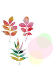 Watercolor vector autumn leaves Stock Photography