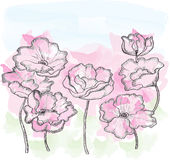 Watercolor  vector background  flowers Stock Photo