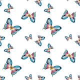 Watercolor vector butterfly pattern Stock Photos