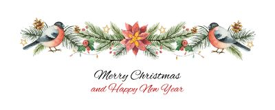 Watercolor vector Christmas banner with fir branches, bullfinch and flower poinsettias. Illustration for greeting cards and invitations isolated on white Royalty Free Stock Images