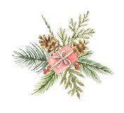 Watercolor vector Christmas bouquet with gift, pine cone and fir branches. Royalty Free Stock Images