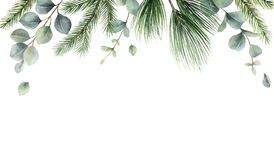 Free Watercolor Vector Christmas Card With Fir Branches And Eucalyptus Leaves. Royalty Free Stock Photos - 199347098