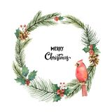 Watercolor vector Christmas frame with Bird Cardinal and fir branches. Illustration for greeting cards and invitations isolated on white background Royalty Free Stock Photos
