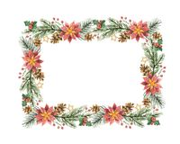 Watercolor vector Christmas frame with fir branches and flower poinsettias. Illustration for greeting cards and invitations isolated on white background Royalty Free Stock Photo