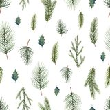Watercolor vector Christmas seamless pattern with fir branches. Illustration for greeting cards and invitations  on white background Royalty Free Stock Photography