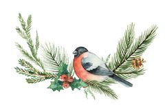 Watercolor vector Christmas wreath with fir branches and bullfinch. Illustration for greeting cards and invitations isolated on white background Royalty Free Stock Image