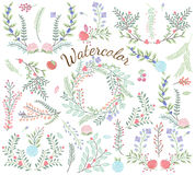 Watercolor Vector Collection of Florals Stock Photography