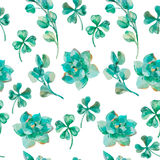 Watercolor vector eucalyptus leaves and branches, succulent, clover. Hand painted watercolor pattern. Shamrock. Royalty Free Stock Image