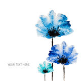 Watercolor vector flower Royalty Free Stock Photography
