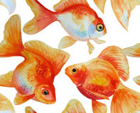 Watercolor vector frame with hand drawn goldfishes Royalty Free Stock Photos