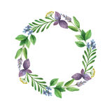 Watercolor vector hand painted frame with herbs and spices. Royalty Free Stock Image