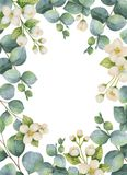 Watercolor vector green floral card with eucalyptus leaves, Jasmine flowers and branches isolated on white background. Watercolor vector hand painted green vector illustration