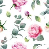 Watercolor vector hand painting seamless pattern of peony flowers and green leaves. royalty free illustration