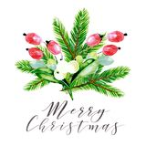 Watercolor vector illustration. Christmas bouquet with mistletoe, fir branches and dog rose berries. Greeting card. Hand. Drawn. Christmas, Xmas, New year Royalty Free Stock Photography