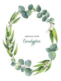 Watercolor vector oval wreath with green eucalyptus leaves and branches. Watercolor vector hand painted oval wreath with green eucalyptus leaves and branches stock illustration