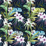 Watercolor vector pattern reptiles chameleon Stock Image