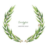 Watercolor vector round wreath with green eucalyptus leaves and branches. Healing Herbs for cards, wedding invitation, posters, save the date or greeting stock illustration