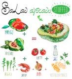 Watercolor vector salad recipe with avocado filling. Watercolor vector set of vegetables with arugula, parsley, tomato, avocado, shrimp, onion, salt Royalty Free Stock Image