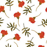 Watercolor, vector, seamless floral pattern with marigolds. Stock Images