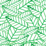 Watercolor vector seamless pattern with green leaves Stock Photos