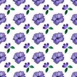 Watercolor vector seamless pattern. Handpaint watercolor vector seamless pattern Royalty Free Stock Image