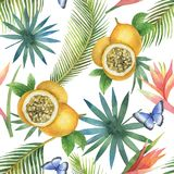 Watercolor vector seamless pattern of passion fruit and palm trees isolated on white background. Hand painted illustration for design kitchen, bio food, menu stock illustration
