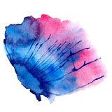 Watercolor vector spot stock photo