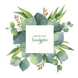 Watercolor vector square wreath with eucalyptus leaves and branches. Watercolor vector hand painted square wreath with eucalyptus leaves and branches. Healing Stock Photo
