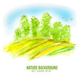 Watercolor vector summer forest. Vector watercolor summer illustration. Abstract forest with green trees. Nature sketch drawing background Royalty Free Stock Photography