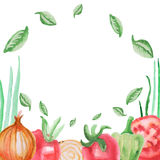 Watercolor vector vegetables frame set tomato, pepper and onion Stock Photos