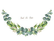 Watercolor vector wreath with green eucalyptus leaves and branches. Stock Photos