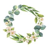 Watercolor vector wreath with green eucalyptus leaves, Jasmine flowers and branches. royalty free illustration