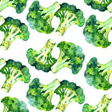 Watercolor vegetable broccoli isolated on a white background. Hand painting Royalty Free Stock Image