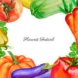 Watercolor vegetable pumpkin, tomato, pepper, zucchini, beets, carrot, parsley hand drawn illustration isolated on white Royalty Free Stock Photography
