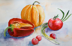 Watercolor Vegetables Stock Images