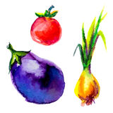 Watercolor vegetables Royalty Free Stock Photography